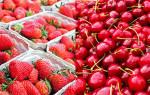 Можно ли отравиться ягодами: чем опасна клубника, земляника и черешня?