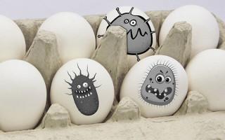 Сальмонеллез в яйцах: как мыть, сколько варить и другие вопросы