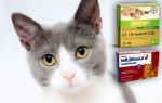 Передозировка глистогонными препаратами у собак и кошек