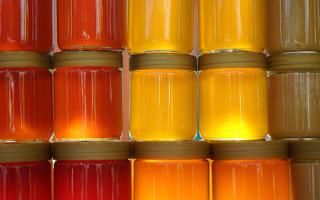 Можно ли отравиться медом: что делает лакомство ядовитым