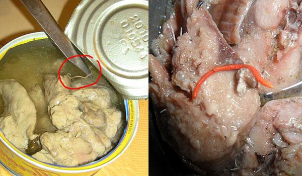Гельминты в рыбных консервах