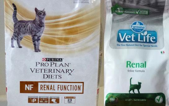 Питание для кошек с почечной недостаточностью