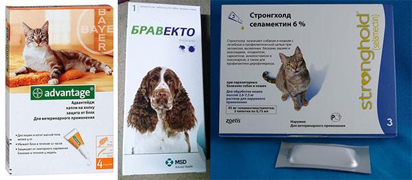 Средства от блох для кошек и собак